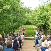 An outdoor wedding in an apple orchard