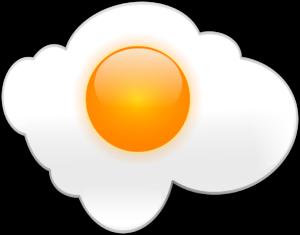 Fried Egg Model of Grief
